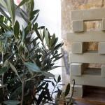 Huile d'olive Marseille