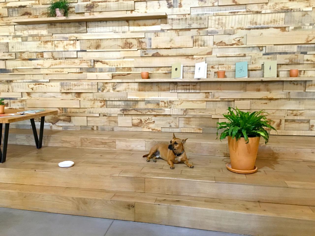 concept store marseille essentiel lifestore love spots. Black Bedroom Furniture Sets. Home Design Ideas