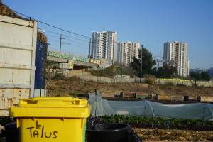 Agriculture urbaine Le Talus Marseille