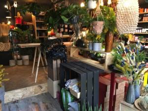 Jupiters boutique de plantes et objets à Marseille