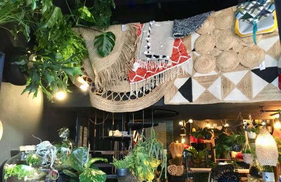Jupiters boutique de plantes et objets à Marseille tapis
