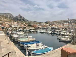Le Grand bar des Goudes, fish restaurant Marseille (port)