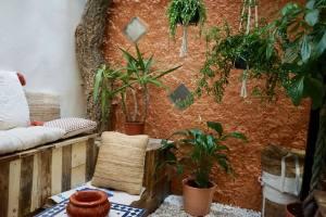 Café Piata, coffee shop et torréfacteur artisanal à Marseille (patio)
