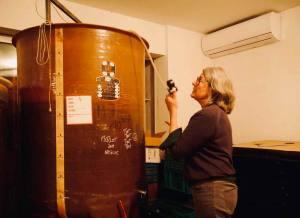Pour, la cave à vins naturels s de Nathalie Cornec (cuves)