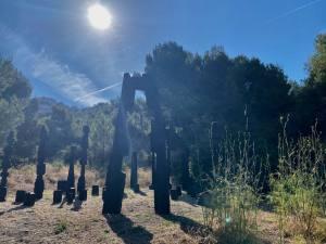 L'Été de la forêt, expo 2020 à la Friche de l'Escalette à Marseille (forêt François stahly))