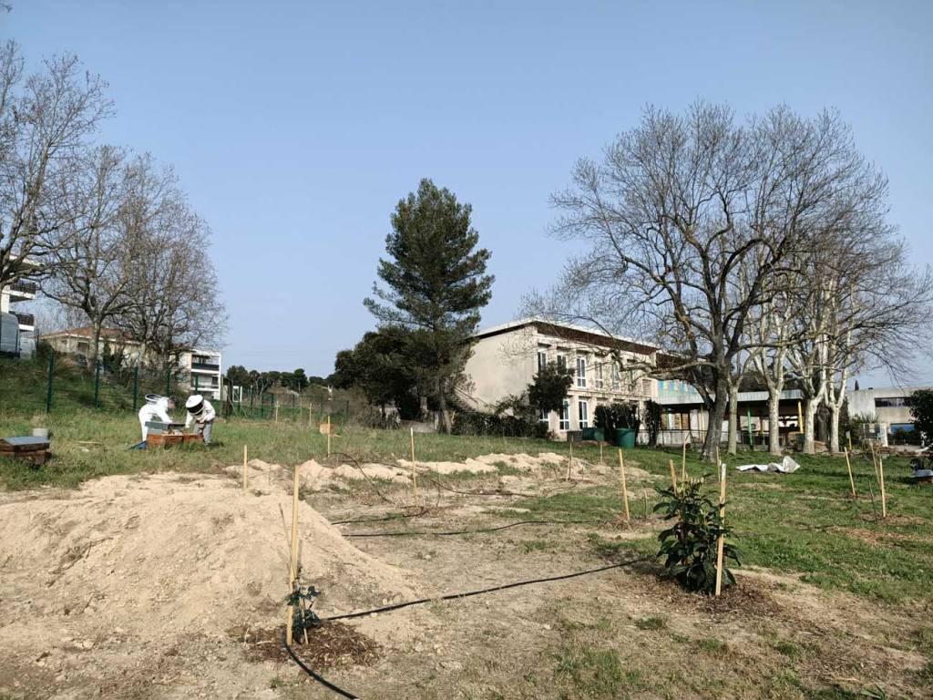 Le Grain de la Vallée, épicerie paysanne à Marseille (jardin)