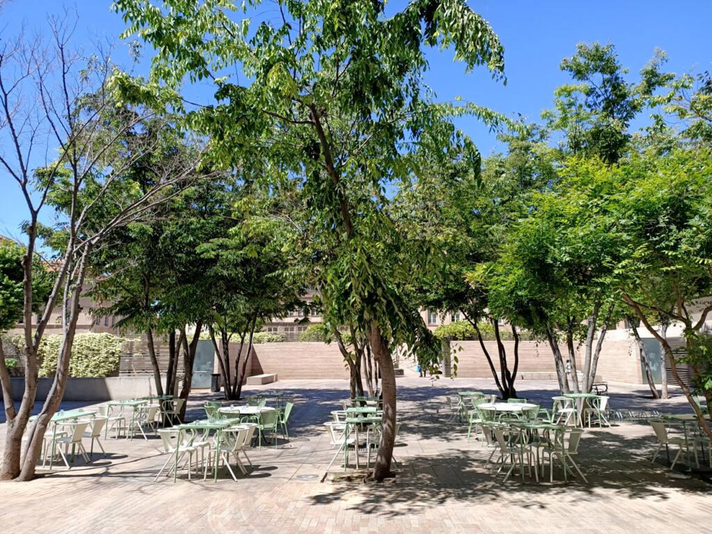 Placette, restaurant avec terrasse à Marseille : terrasse ombragée